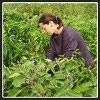 La ferme des Bons Bons Légumes