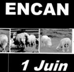 pub-encan-banner-t