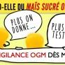Testez vos épluchettes de blé d'Inde! Vigilance OGM.