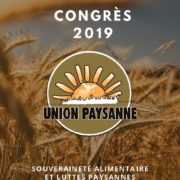 thumbnail of Cahier du congres compresse